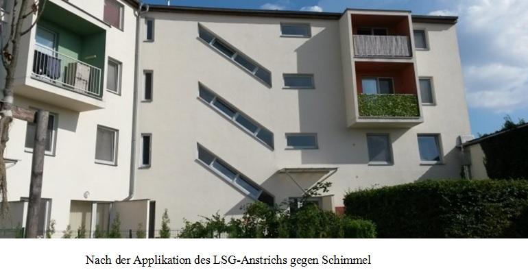 LSG-Anstrich