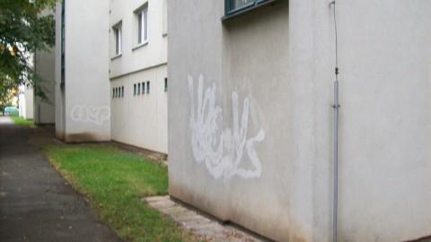 Graffiti Dienstleistung München